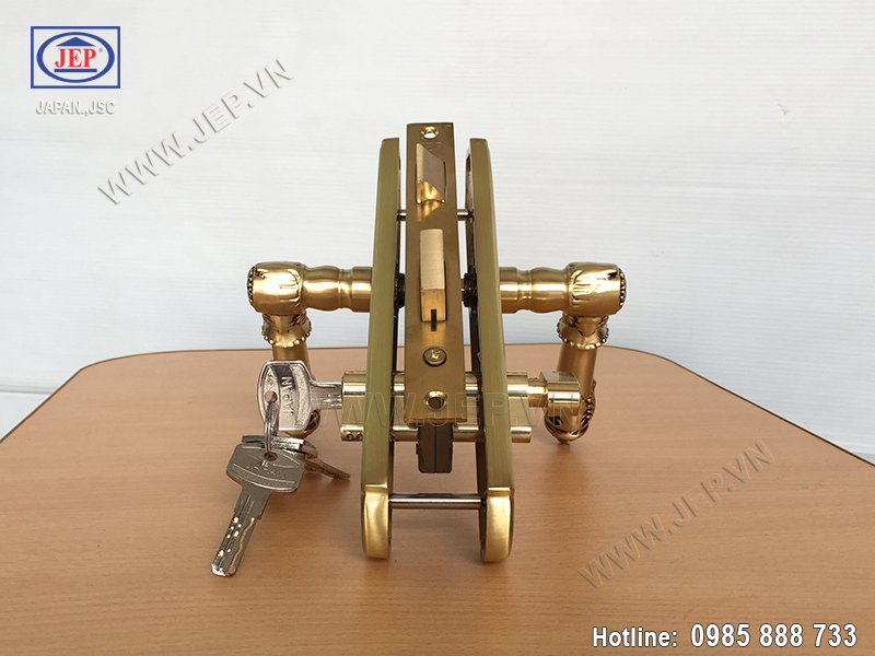 Khóa tay gạt cửa phòng ngủ JP-505-RG - ảnh 3
